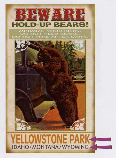 Custom Hold Up Bear Sign