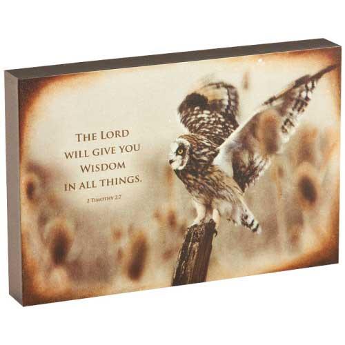 Owl Wisdom Art