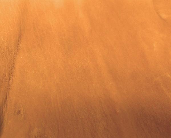Deerskin Tan Leather
