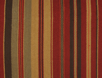 Longhorn Stripe Fabric