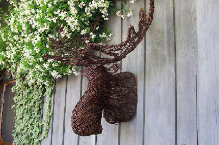 Grapevine Moose Head