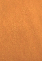Deerskin Tan Leather