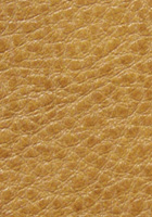 Sagebrush Leather
