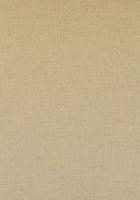 Allure Fabric