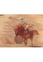 Bronco Rider Fabric