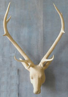 Carved Wood Noble Stag
