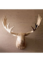 Carved Wood Moose Head